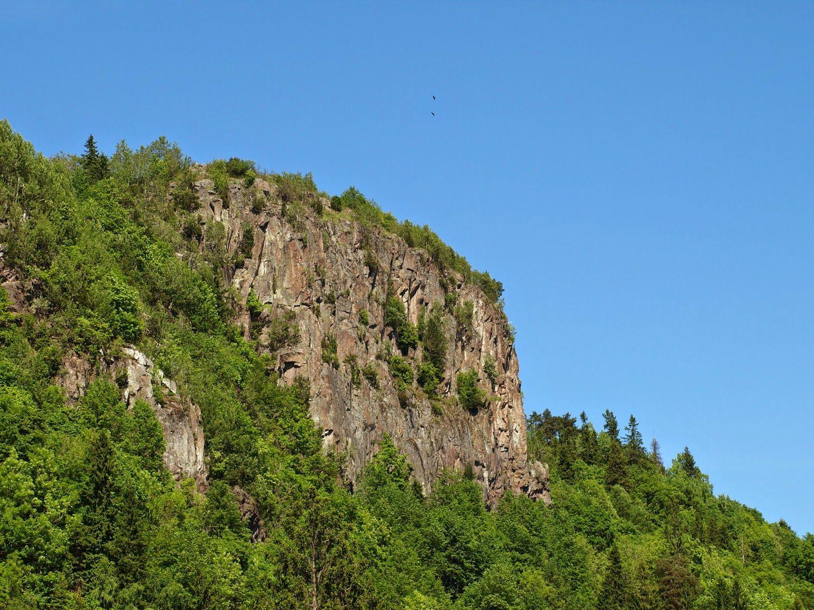 Rauhasi Luonto Luontosi Rauha: Elämän ensimmäinen vuori
