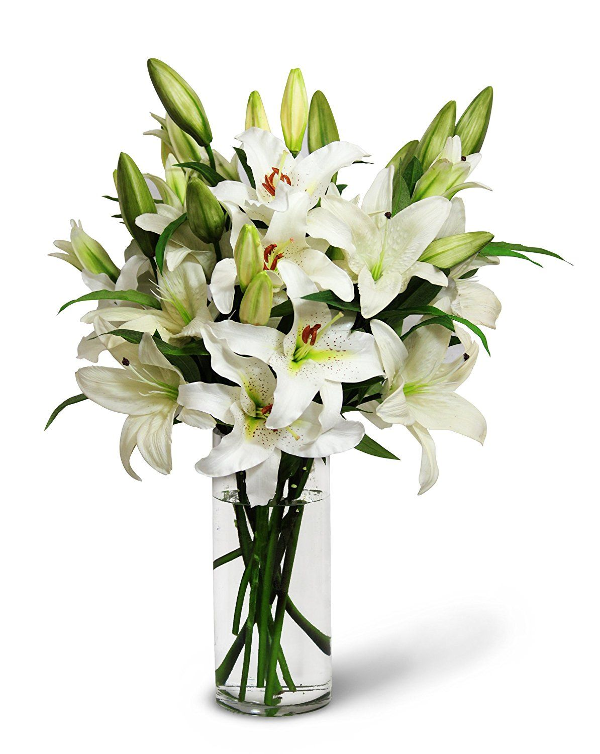 White Lily Bouquet (13 Stems) The KaBloom Collection