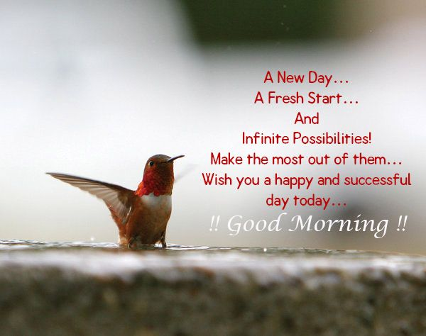 Its A New Day Quotes New Day A Fresh Start Nice Picture Quotes