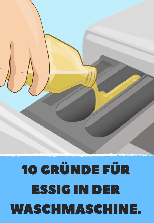 10 Grunde Fur Essig In Der Waschmaschine Waschmaschine