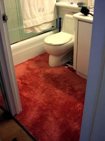 How To Look After Carpet In The Bathroom Bathroom Rugs Long