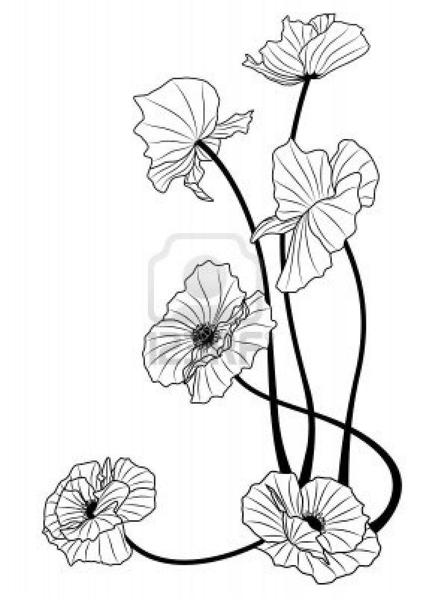 Mohnblumen In Den Schwarzweiss Farben In 2020 Jugendstil Blumen Art Nouveau Tattoo Mohnblumen Kunst