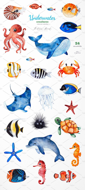 Underwater Creatures In 2020 Underwater Creatures Sea Creatures Drawing Sea Creatures Art