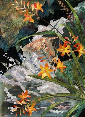 Amanda Richardson - Artist