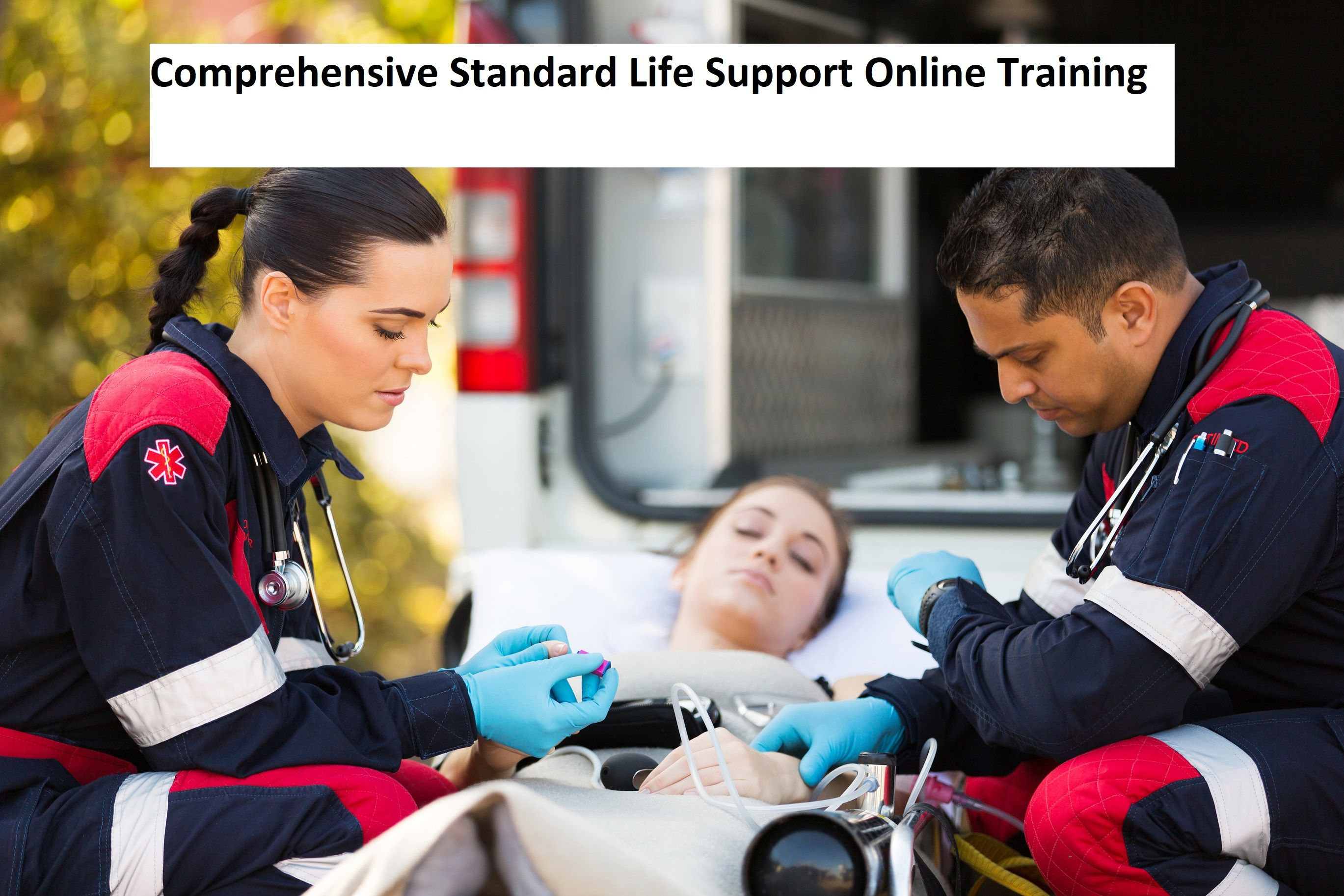 Online trainingcertification is valid for 2 years from completion certification is valid for 2 years from completion adult pediatric cpr 1betcityfo Choice Image