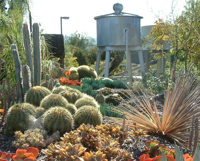 The Garden Featured On Nbc7 San Diego The Water Conservation Garden The Water Conservation Garde Most Beautiful Gardens Beautiful Gardens Water Conservation