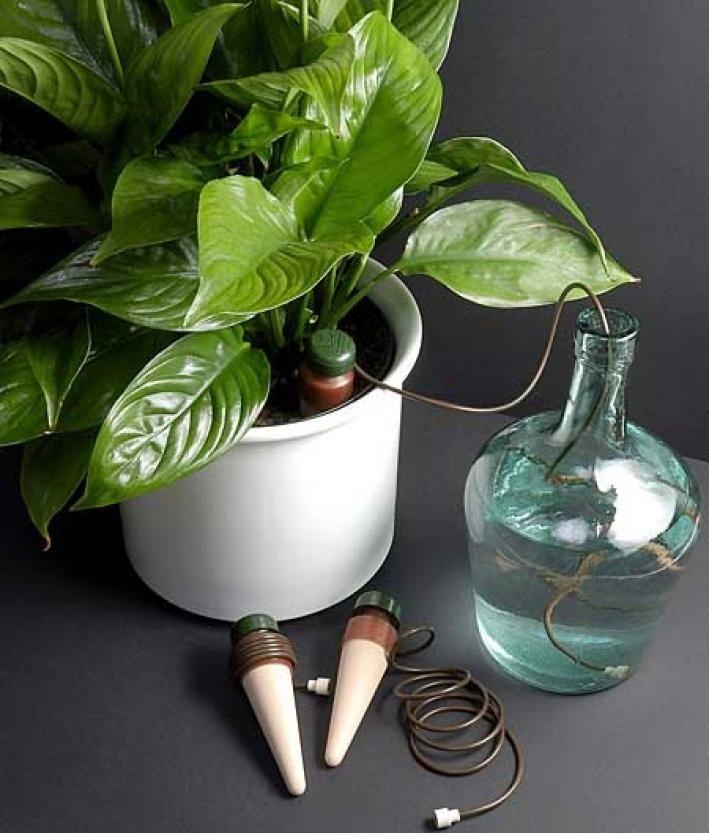 zimmerpflanzen automatisch bewässern | bewässerung, zimmerpflanzen, Gartengerate ideen