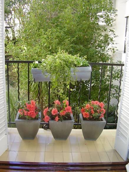 Consejos para un jardín en macetas | Jardín en maceta, Macetas y Jardín