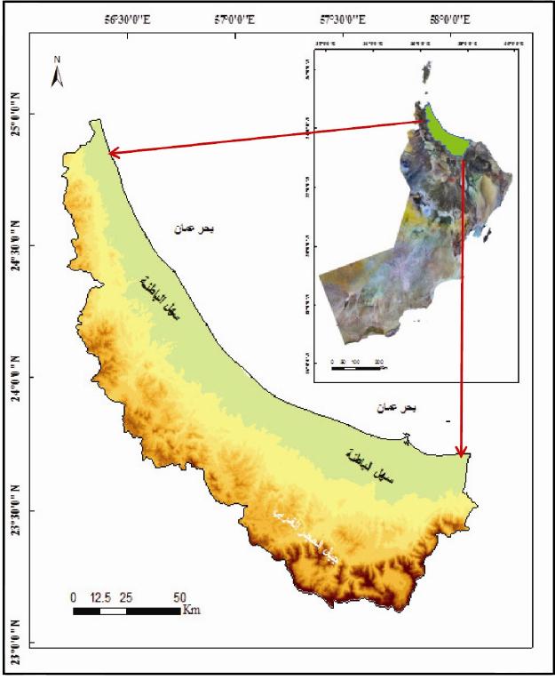 الجغرافيا دراسات و أبحاث جغرافية تقييم التأثيرات المحتملة لارتفاع مستوى سطح البحر ع Geography Places To Visit Blog Posts