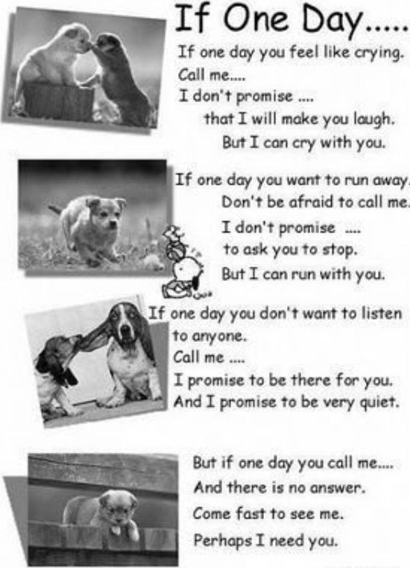 Awwww this is so cute!:)