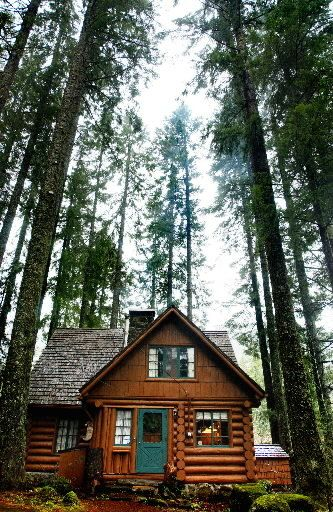 CabinsTreehousesTiny Houses on Pinterest Log Cabins