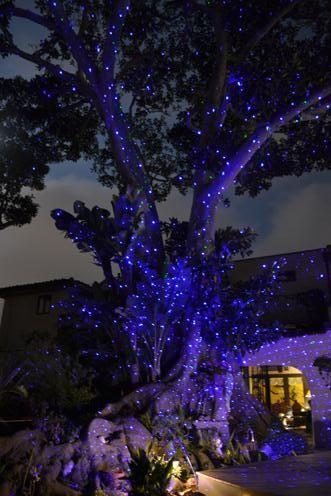 Outdoor Firefly Laser Light Projector Photo Gallery Updated Dec 2016 Lighting Cool Lighting Tree Lighting