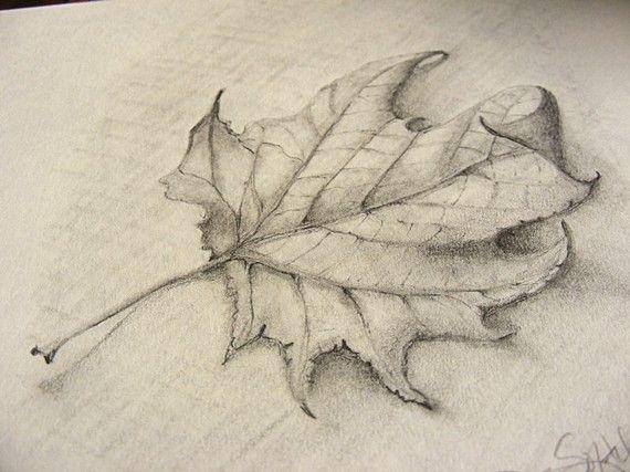 Fallen leaf pencil sketch with burlap clip frame