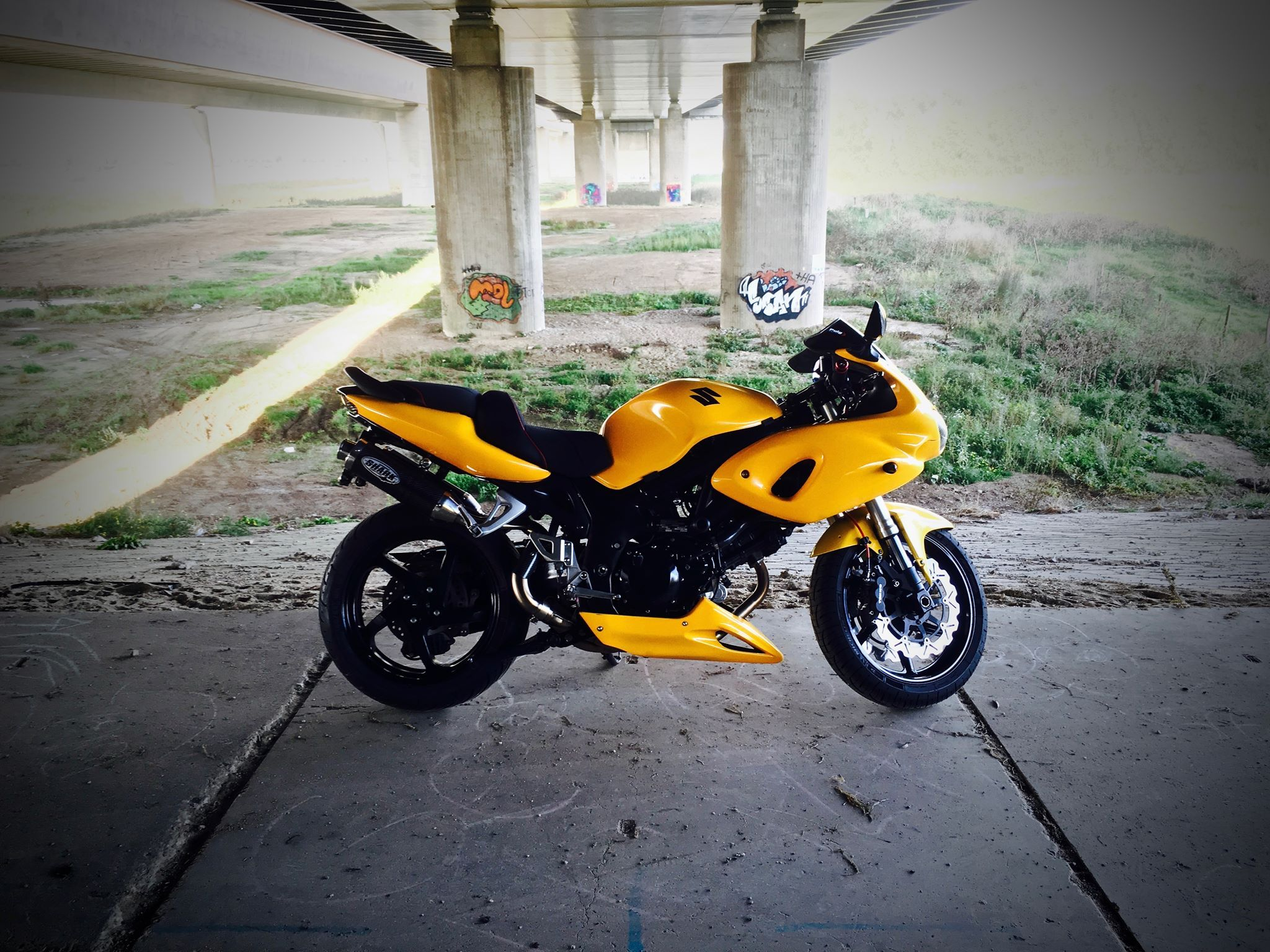 Custom suzuki sv650s 99 02 honda vfr vtec swingarm suzuki tl1000r fron suspension honda vtr
