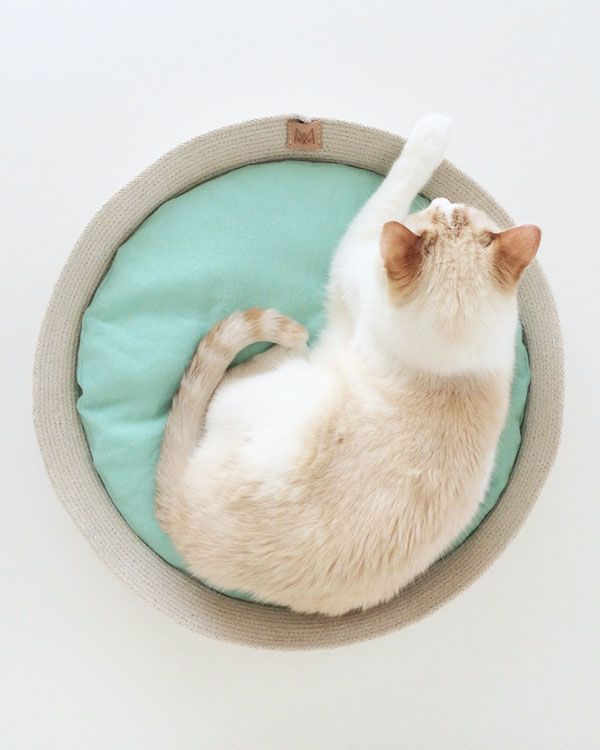 Cool beds for cool cats. Coiled rope and linen cat beds by Siamese Social Club.