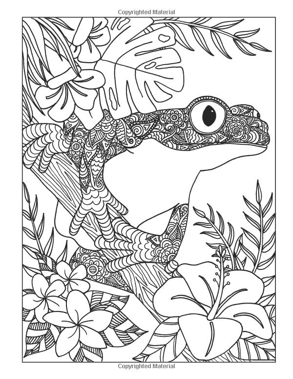 Inkspirations Animal Kingdom: Captivating Coloring Designs ...