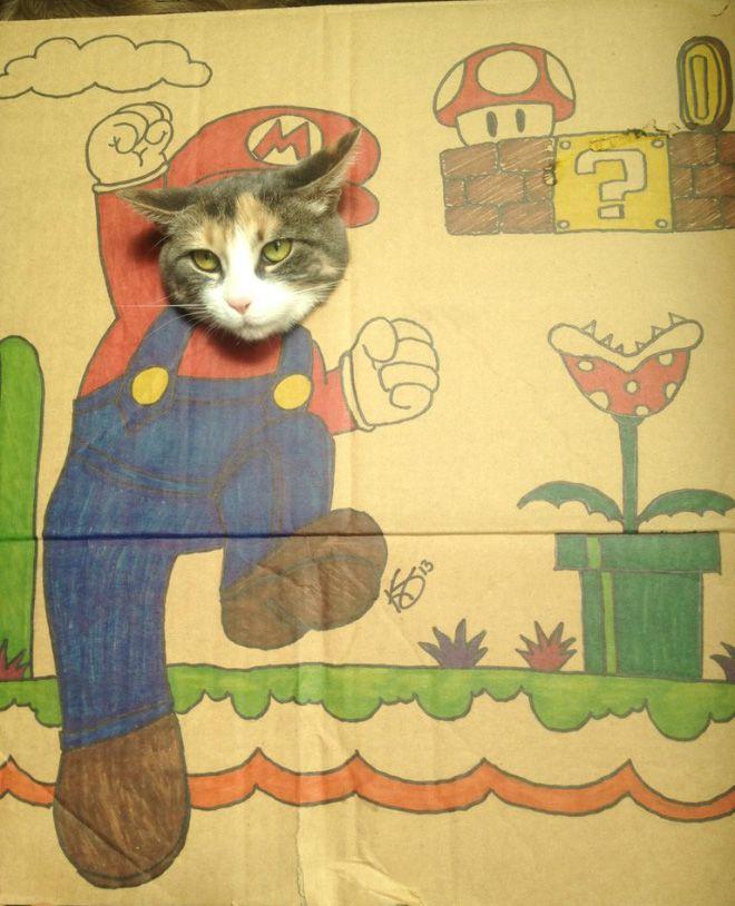 Arte com Gatos e Caixas de Papelão