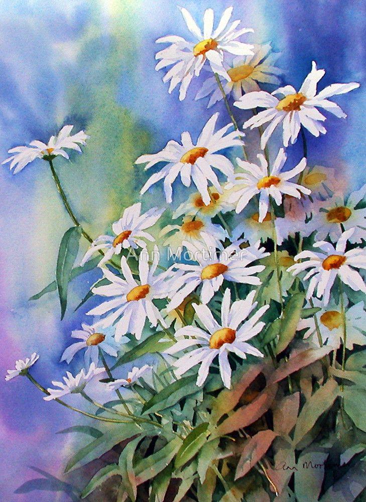 цветы ромашки картинки акварель ждал