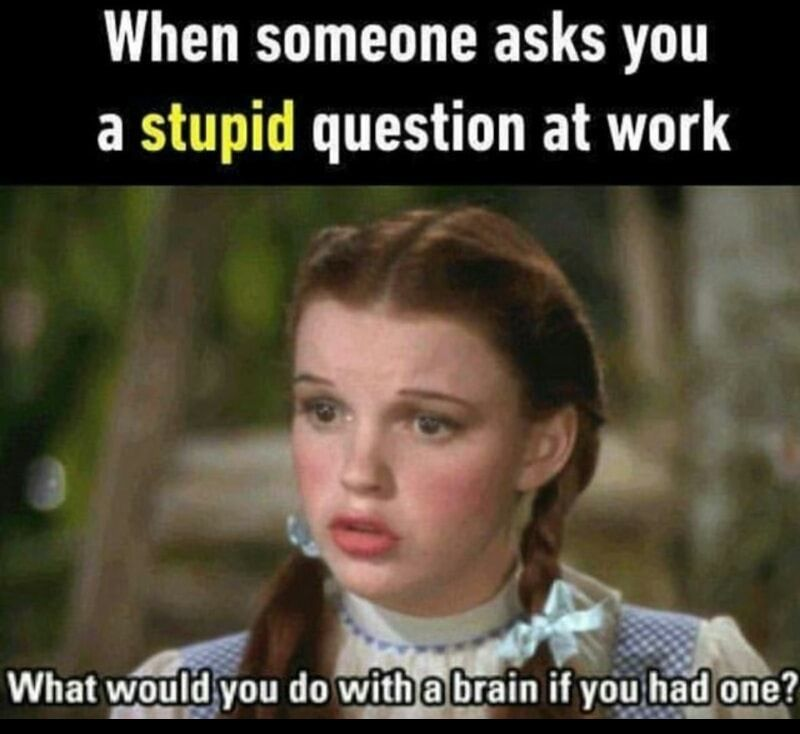 55 Hilarious Memes Guaranteed To Make You Laugh Funny Memes About Work Work Memes Work Humor