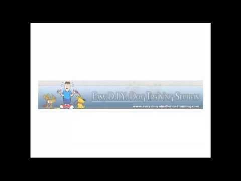 Easy Diy Dog Training Secrets Review Http Getdogtrainingtips Com