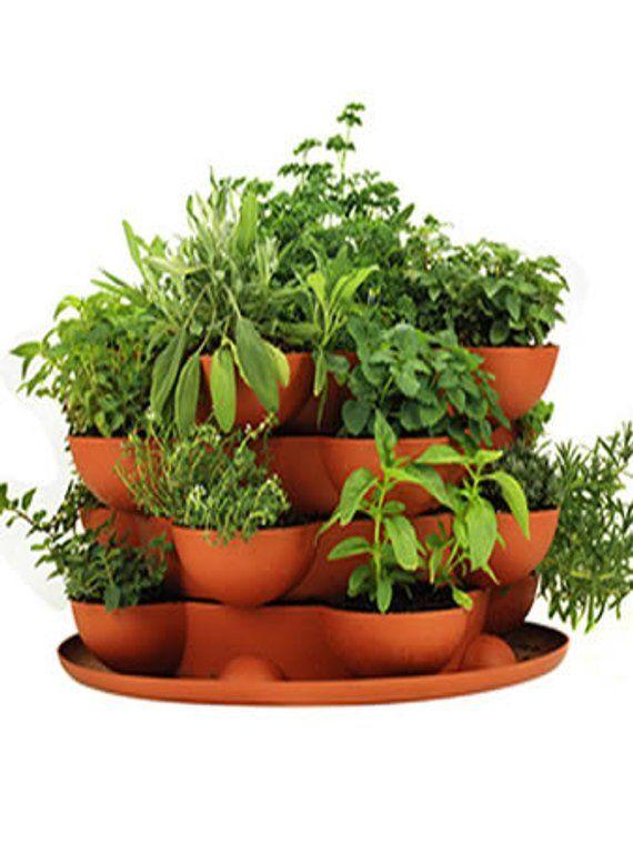 Stack Grow Planter Plus Culinary Herb Garden Starter Kit Complete Indoor Outdoor