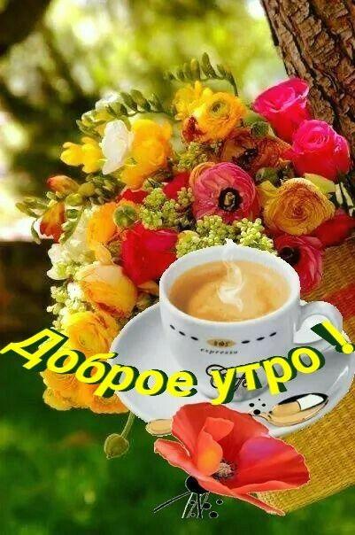 Пин от пользователя Ира Козакова на доске Хочу здесь ...