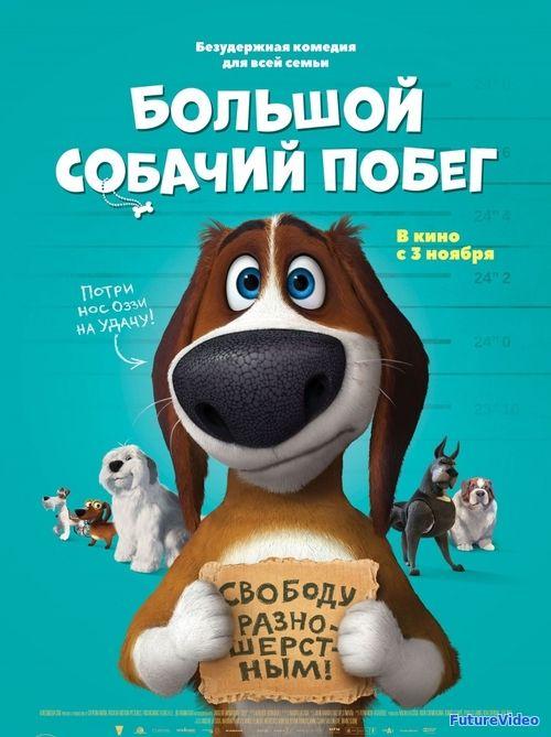Большой собачий побег (2016) — смотреть онлайн в HD бесплатно — FutureVideo