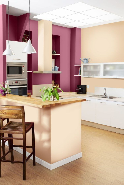 peinture-murale-couleur-rose-fuschia-cuisine  Peinture murale