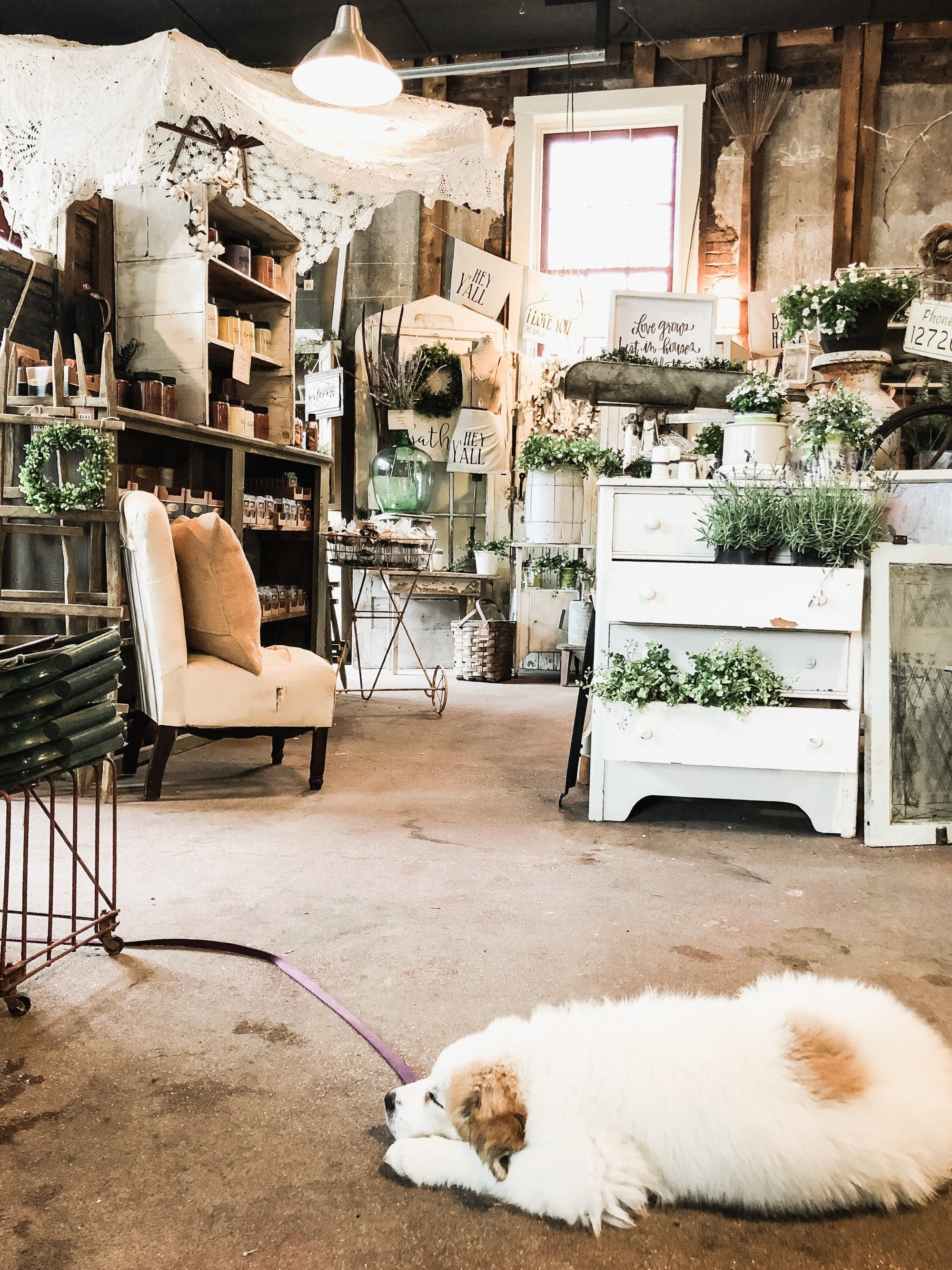 The Best Little Shop In Madison, Indiana - Liz Marie Blog ...