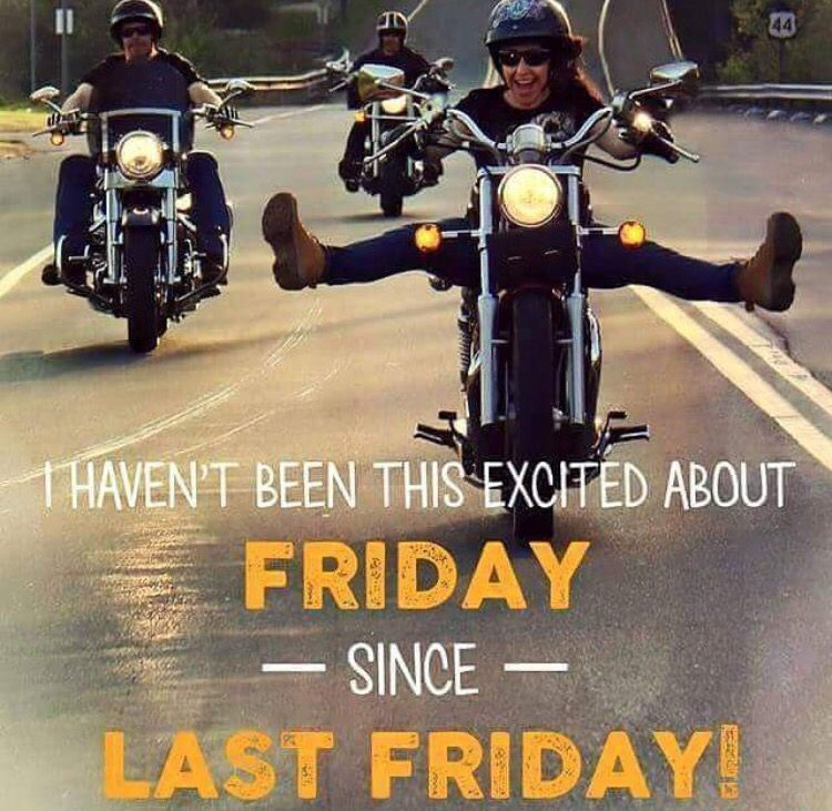 Hello Friday!! Bike humor, Motorcycle memes, Motorcycle
