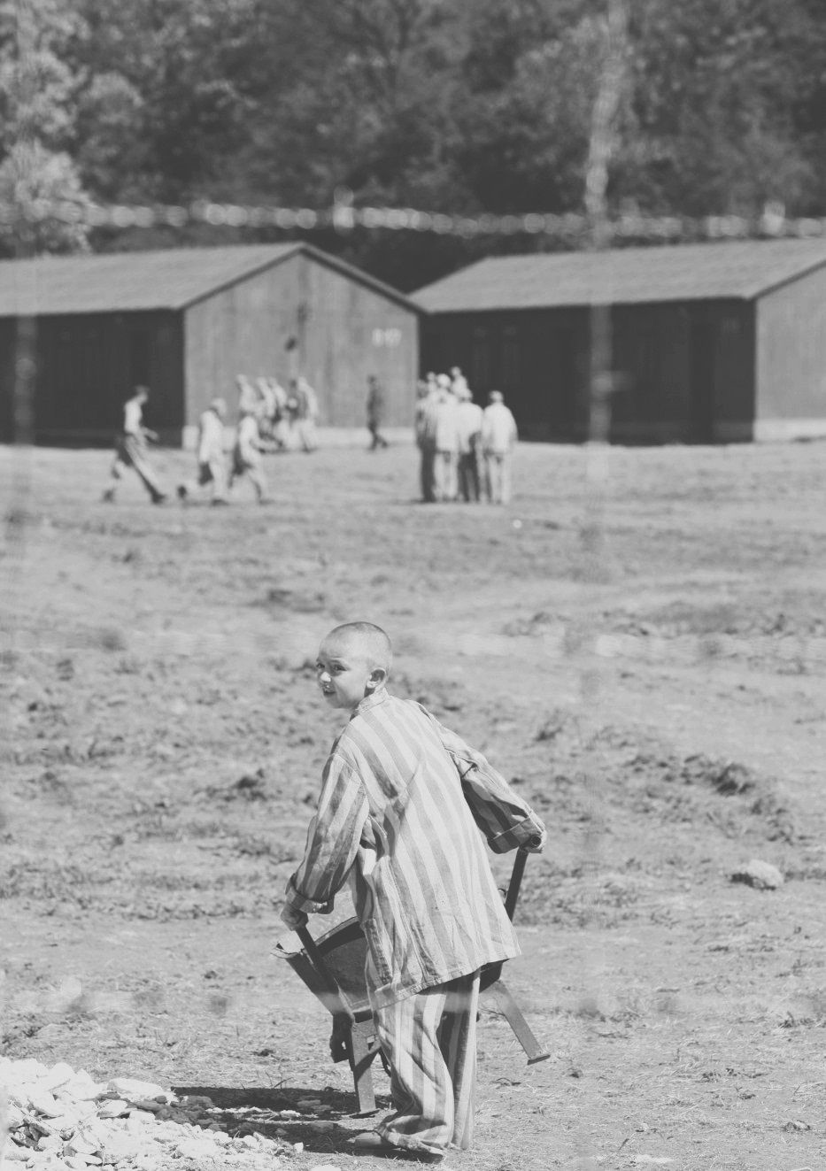 shmuel in the boy in the striped pajamas