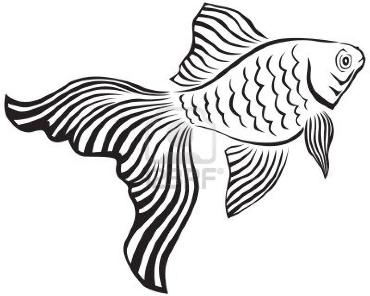 Line Art Image Of A Gold Fish With Its Veiltail Line Art Images Drawn Fish Line Art Drawings