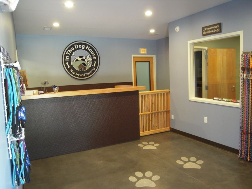 Repinned In The Dog House Playcare Boarding Grand Opening