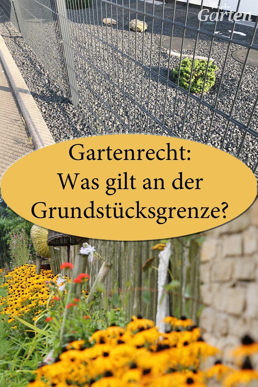 Rechtsfragen Rund Um Den Garten Bepflanzung Garten Pflanzen