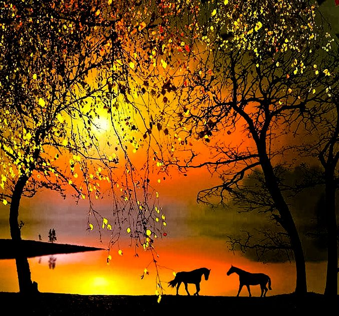 Morning in Moldova ~ by Igor Zenin