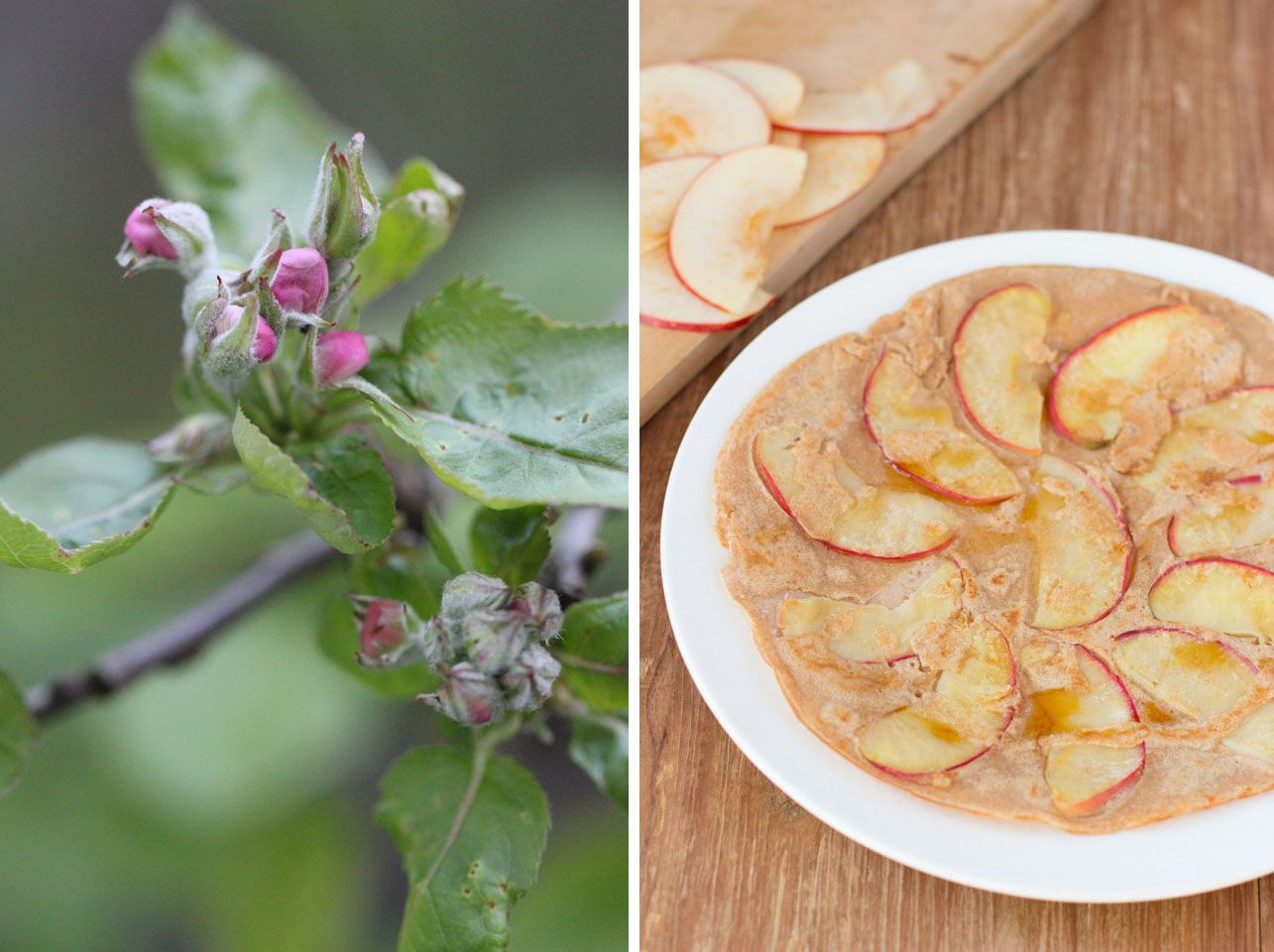 Apfelpfannkuchen aus Kokosmehl | food in 2018 | Pinterest ...