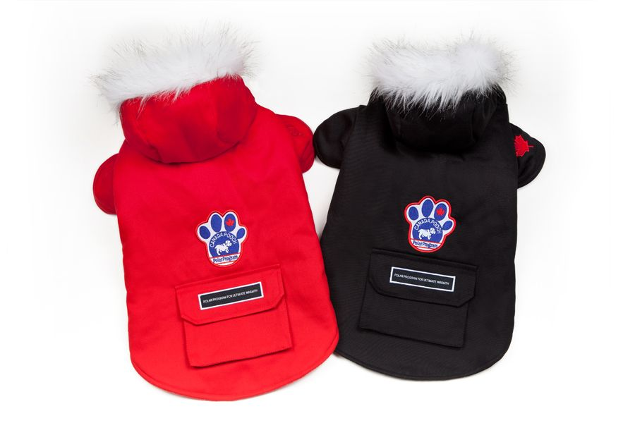 canada goose jacket for dogs