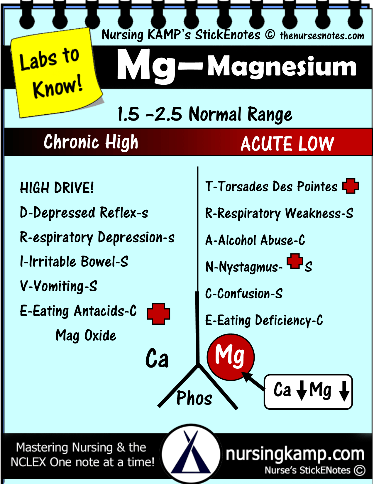 Magnesium Acute Is Low