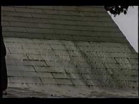 Best Removing Algae Stains From Roof Shingles Roof Shingles Shingling Roof Cleaning 400 x 300