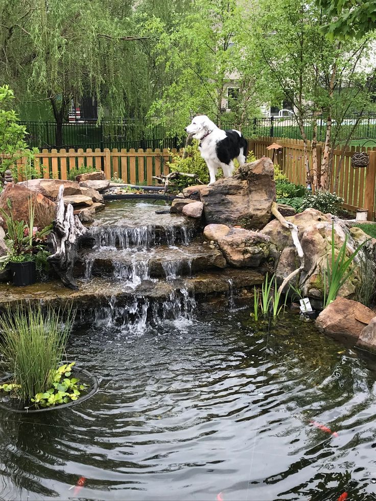 how to build a koi pond on a slope