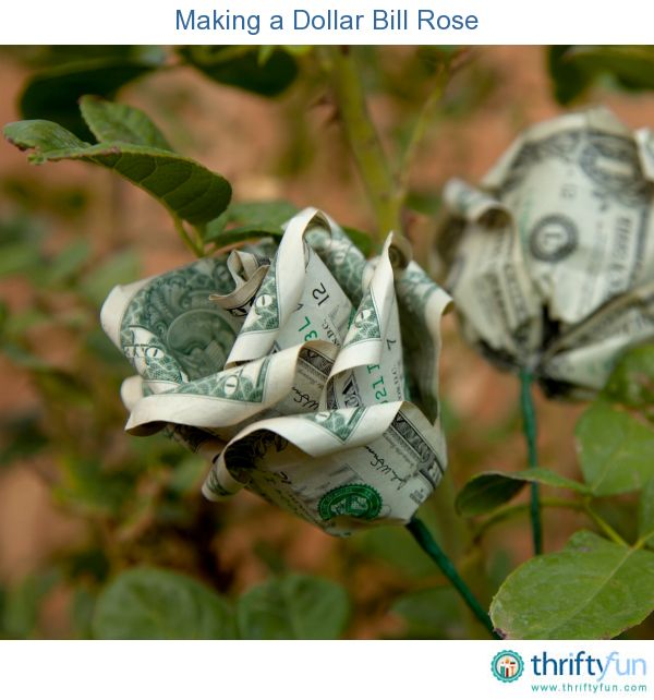 How To Fold A Rose With Money