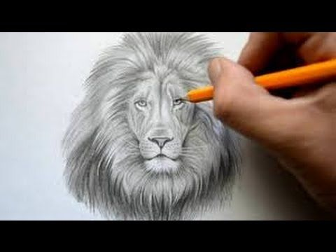 How to draw a lion face easy way step by step drawing for kids and beginners youtube
