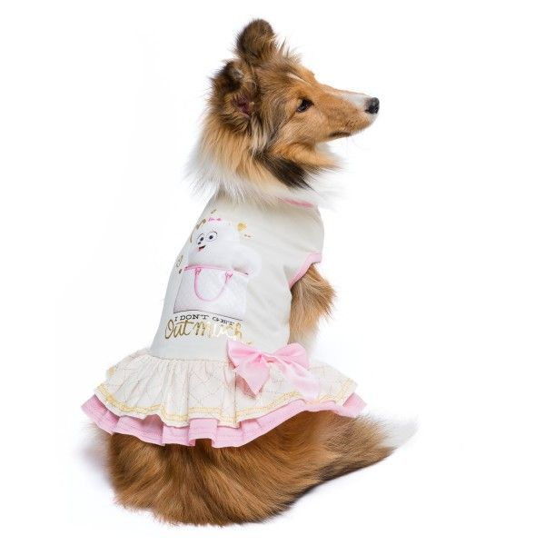 Get Great Saving With Petsmart Coupon Code On Dog Dresses