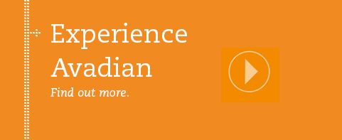 Avadian Credit Union Financial Services Online Banking Online Banking Financial Services Credit Union