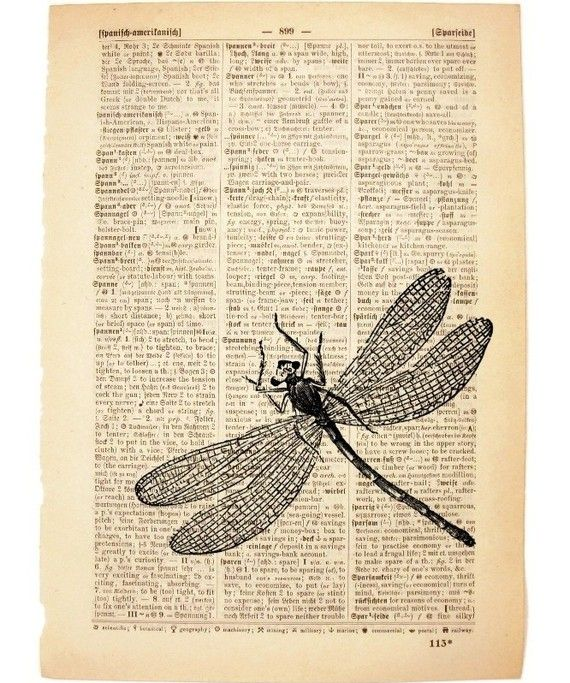 dragonfly on old page