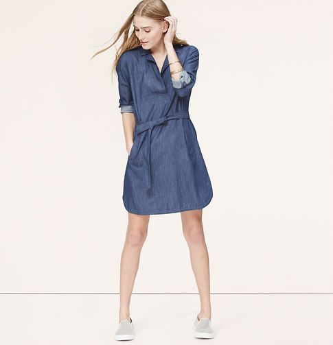 47+ Chambray belted shirt dress trends