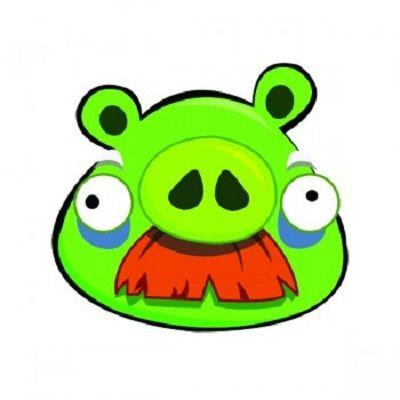 angry bird pig stickers angry bird pig stickers funny sticker rh pinterest co uk