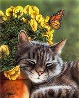Afternoon Nap Fine-Art Print