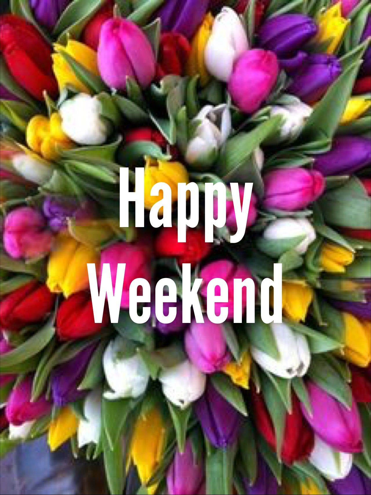 TGIF! Wishing you all a great weekend. | Tulips, Spring flowers, Flowers
