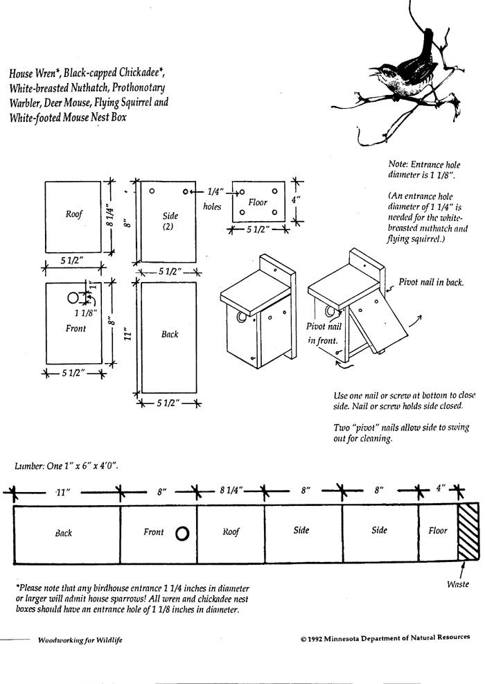 17 Best 1000 images about Bird house plans on Pinterest Nuthatches